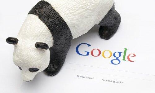 Алгоритм Google Panda – как уберечься от зверя
